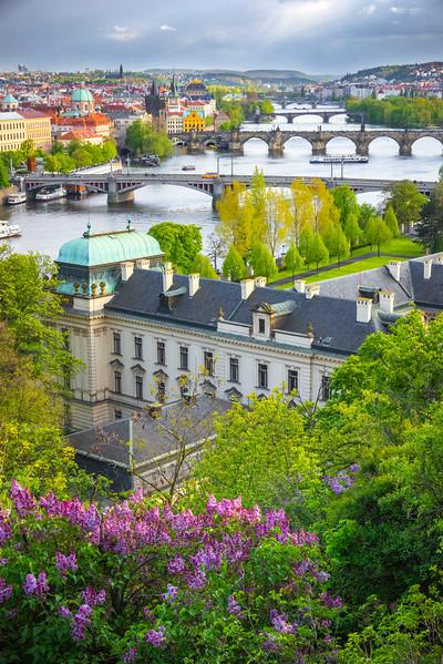 Overlooking The Bridges And Prague From Letenske Park