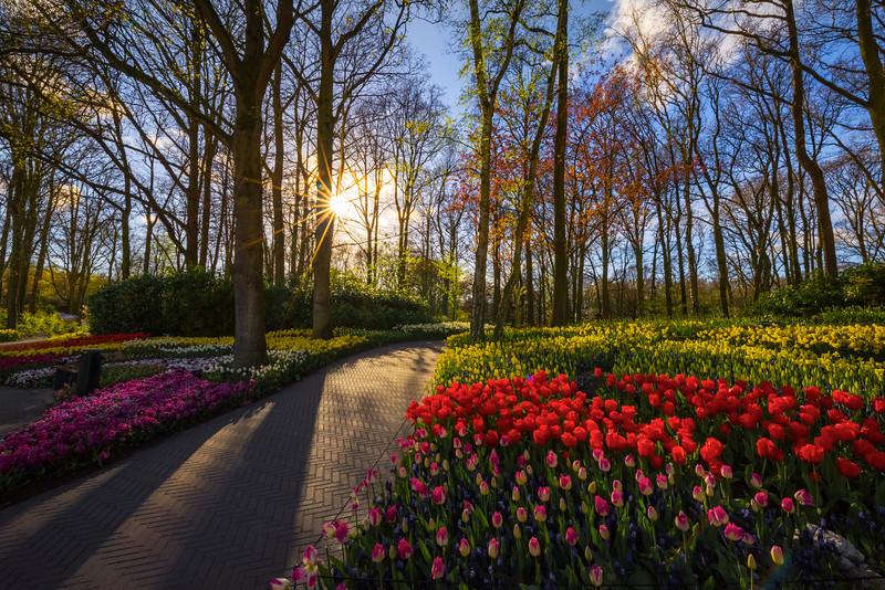 A Good Evening For A Garden Walk