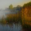 Foggy Morning MIst On Lake