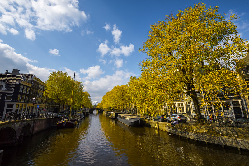 Reflections Of Light Along The Canals