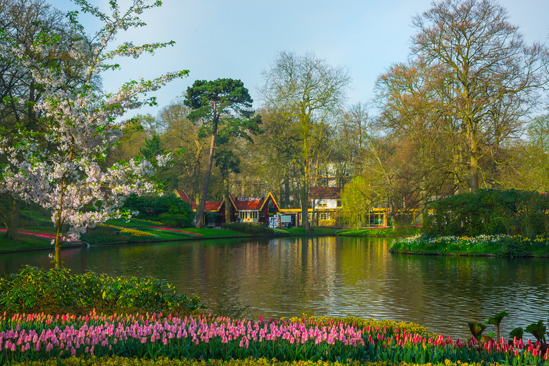 Images from Keukenhof Gardens in Lisse of South Holland