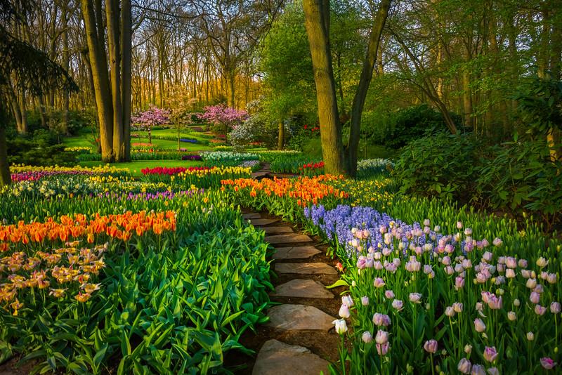 Garden Of Eden Early Morning