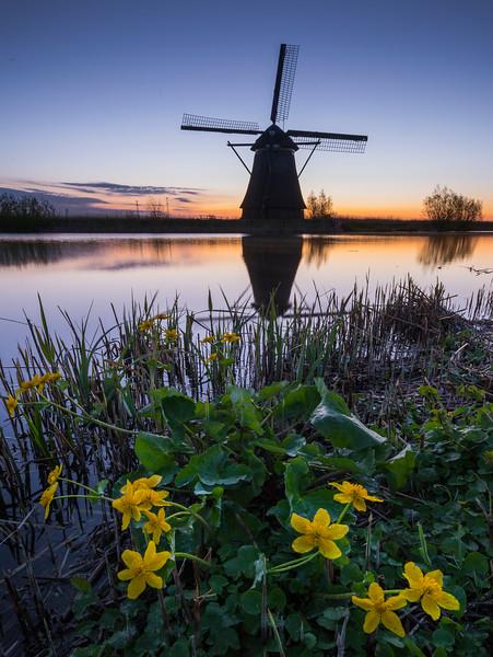 Kinderdijk Windmills_21