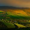 The Hillside Green Of Ireland - The Dingle Peninsula, County Kerry, Ireland