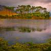 Island Paradise - Derryclare Lough, Connemara Loop, County Galway, Ireland