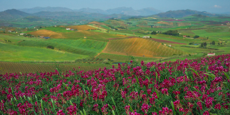 Sicily_Segesta_12_Pano