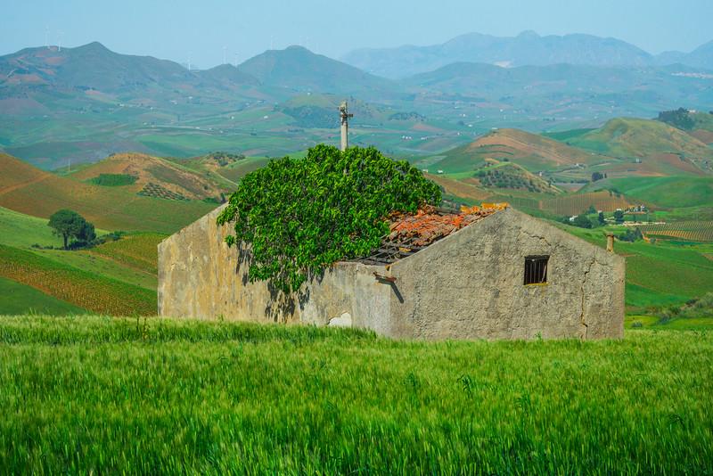 Sicily_Segesta_5