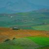 Sicily_Segesta_6
