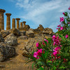 Agrigento_The Valley of the Temples_17