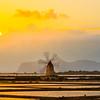 Marsala_Mozia_Windmills_10