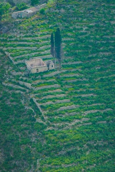 Sicily_Taormina_21