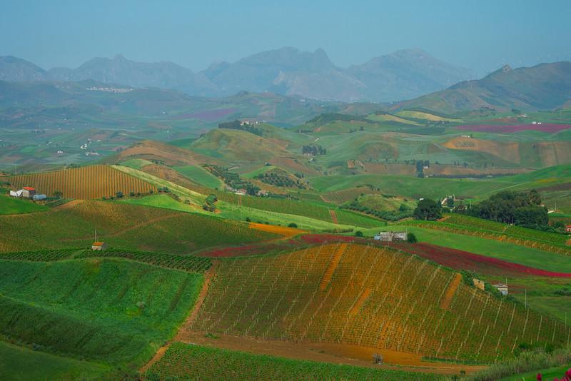 Sicily_Segesta_14