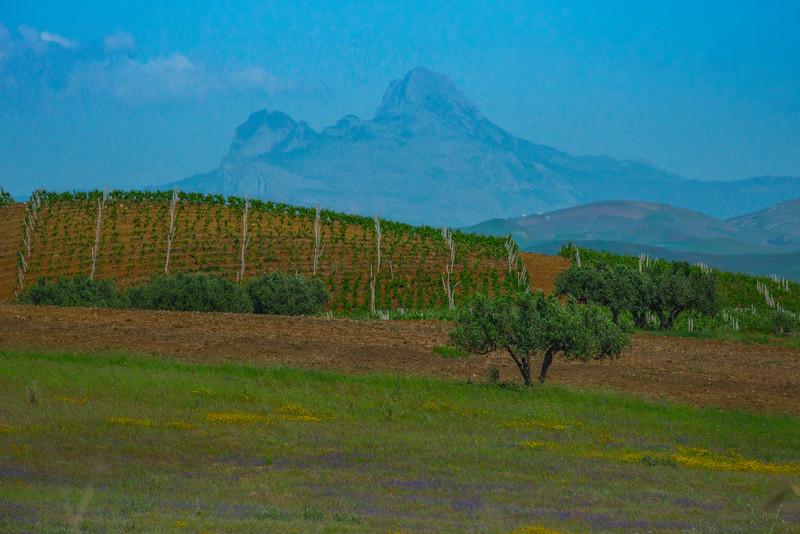 Sicily_Segesta_3