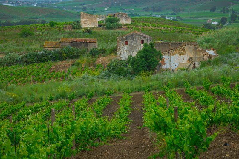 Sicily_Alcamo_11