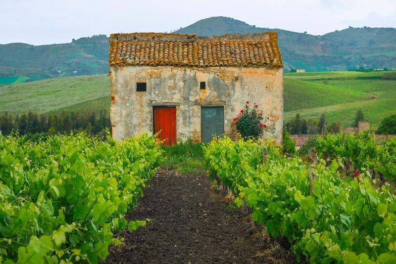 Sicily_Alcamo_18