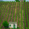 Sicily_Alcamo_15