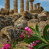 Agrigento_The Valley of the Temples_15