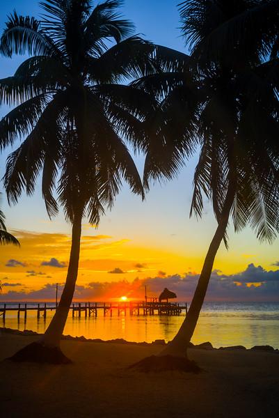 Sunrise Between Palms - Marathon, Florida Keys, Florida