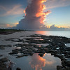 Coming Out Of The Ocean - Bahia Honda State Park, Florida Keys, Florida