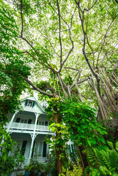 The Old Historic Houses Of Key West - Key West, Florida Keys, Florida