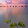 Triplets - Bahia Honda State Park, Florida Keys, Florida