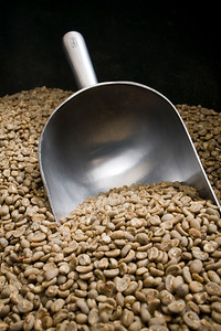 Unroasted Coffee Beans  Dimensions: 3888 x 2592 Resolution: 240 dpi Size: 4.60MB