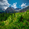 Wildflower Meadows In The Hills Of Glacier - Grinnell Glacier Trail, Glacier National Park, Montana