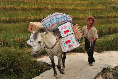 PingAn to DaZhai Guangxi China DSC_5876