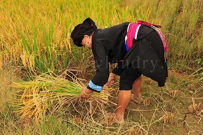 PingAn to DaZhai Guangxi China DSC_5717
