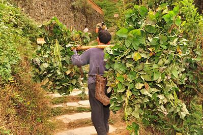 PingAn to DaZhai Guangxi China DSC_5812
