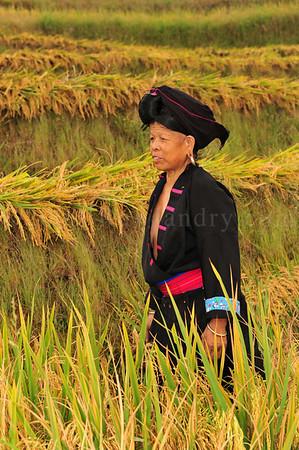 PingAn to DaZhai Guangxi China DSC_5708