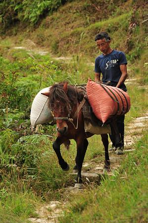 PingAn to DaZhai Guangxi China DSC_5578
