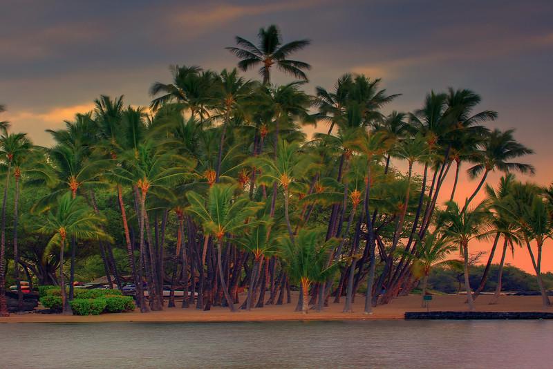 Tropical Isolation - A' Bay Pond, Kona, The Big Island, Hawaii