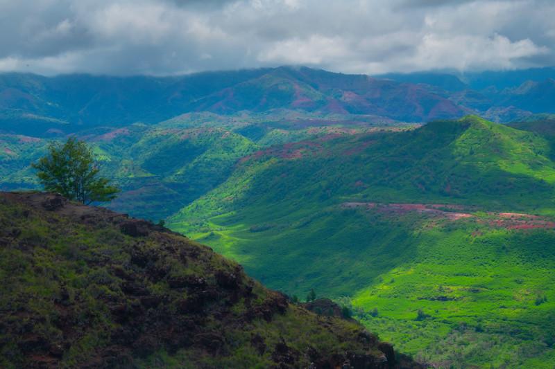 Dashing Light Over The Green Valley - Waimea Valley, Kauai, Hawaii