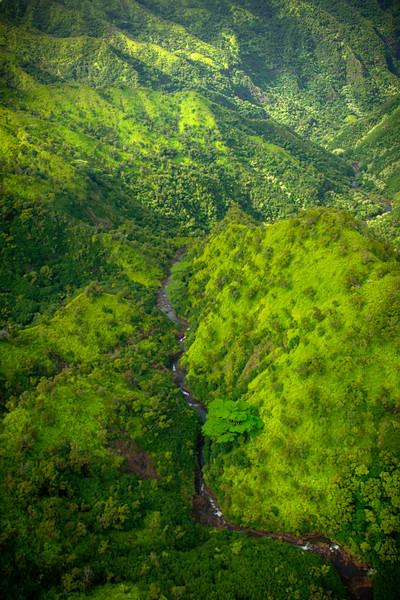 Looking Down Into The Heart Of River Land - Waimea Canyon, Kauai, Hawaii