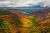 Color Bursting In The Valley - Waimea Valley, Kauai, Hawaii