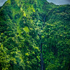Waterfalls Extending Down The Whole Peak - Waimea Canyon, Kauai, Hawaii