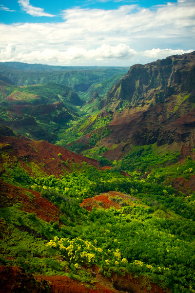 All The Variety Of Colors In The Valley - Waimea Canyon, Kauai, Hawaii