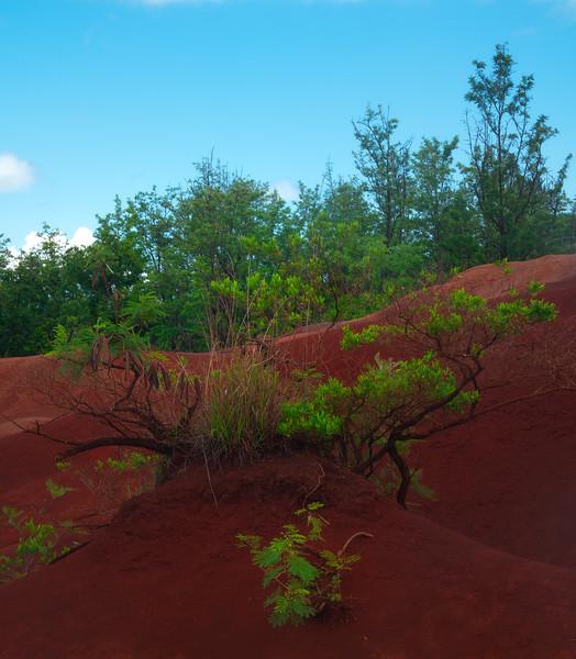 The Red Hills Of Waimea - Red Dirt Waterfall, Waimea, Kauai, Hawaii