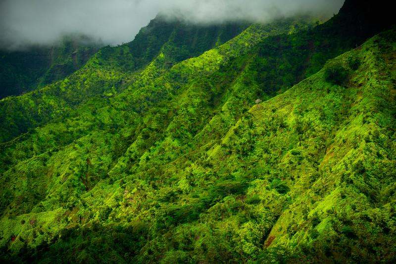 Rolling Light Over The Valley Knolls - Na Pali Coastline, Kauai, Hawaii