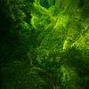 Everything Flows Downhill - Na Pali Coastline, Kauai, Hawaii