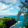 The Kilauea Lighthouse Framed In Foliage- Kilauea Lighthouse, North Shore, Kauai, Hawaii