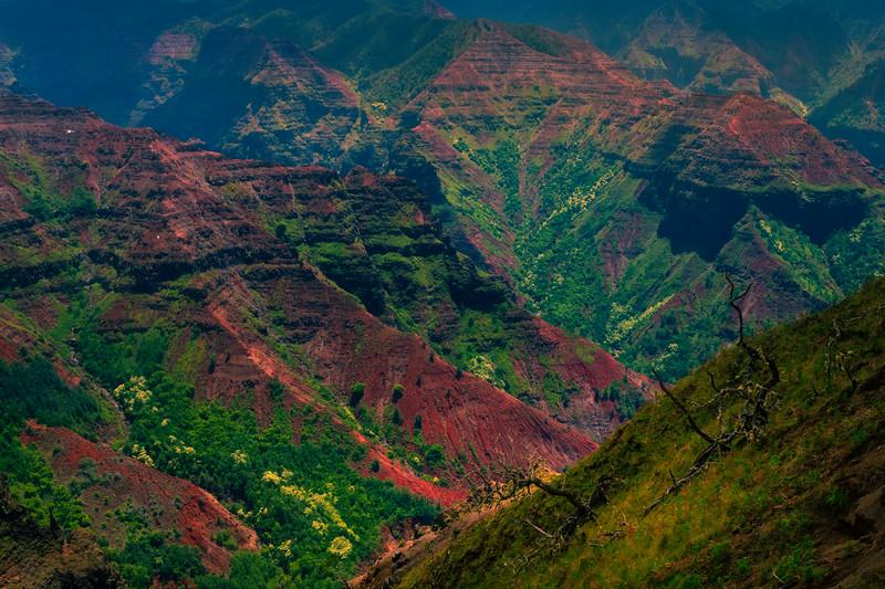 Crossing Paths In The Canyon - Waimea Canyon, Kauai, Hawaii