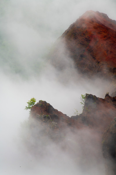Misty Clouds Moving In And Out Of The Clouds - Waimea Canyon State Park, West Side, Kauai
