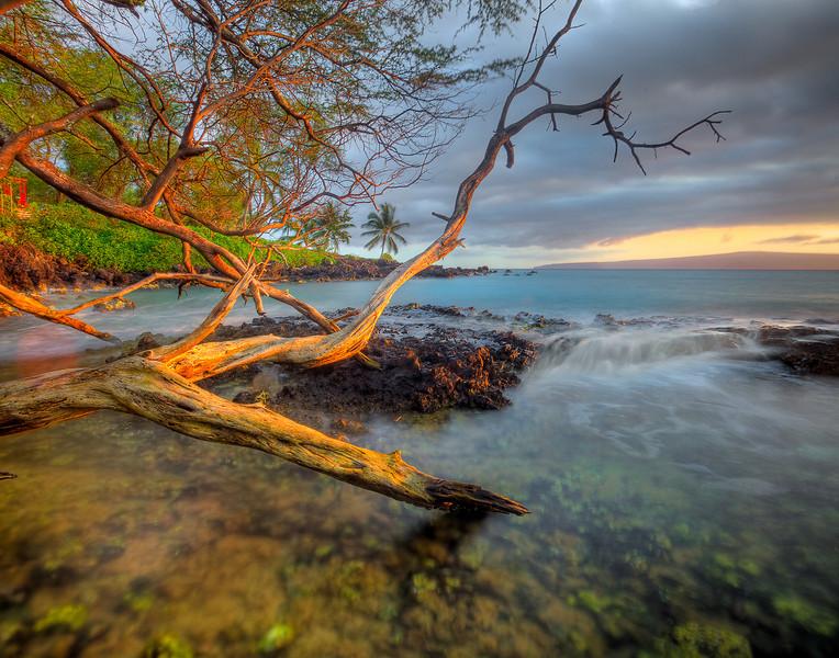Reflected Light - Ahihi Cove, Maui, Hawaii