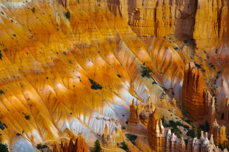 A Paintboard Of Colors Within The Canyons - Bryce Canyon National Park, Utah