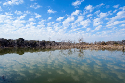 Lake Waco, near Reynolds Creek.   This image is protected by U. S. copyright laws so it cannot be copied, downloaded, or reproduced by any means without the formal written permission of Mark Chapman at Country Images.