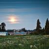 Harvest_moon_farm