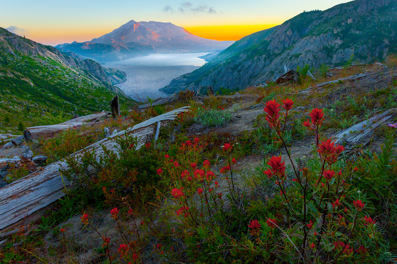 Mt St Helens From Norway Pass