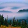 Rolling Mist Around Tipsoo Lake -Mount Rainier National Park, Washington